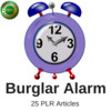 Thumbnail Burglar Alarm, PLR Private label Rights Articles 2016