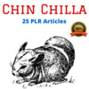 Thumbnail Chinchilla - High Quality PLR Private Label Rights Articles