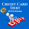 Thumbnail Credit Card Debt - Private Label PLR Articles on Tradebit