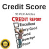 Thumbnail Credit Score - Private Label Rights PLR Articles on Tradebit