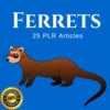 Thumbnail Ferrets - PLR Articles Private Label Rights on Tradebit